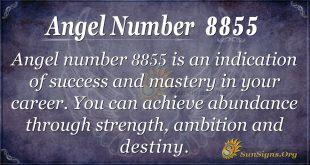 Angel Number 8855