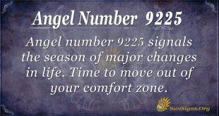 angel number 9225