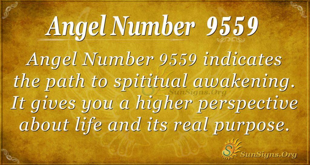 angel number 9559