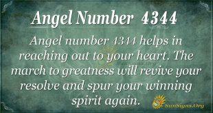 Angel Number 4344