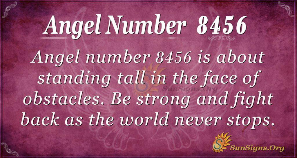angel number 8456