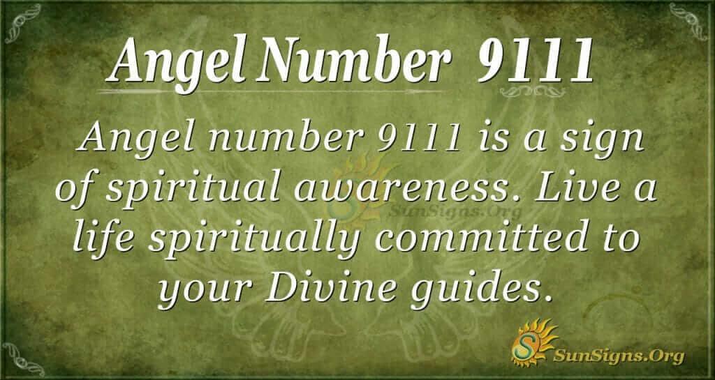 Angel Number 9111