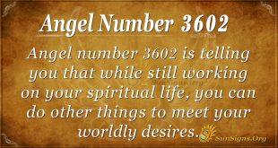 Angel Number 3602
