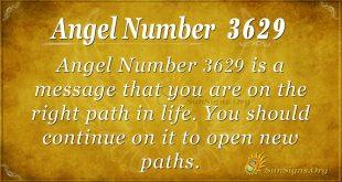 Angel number 3629