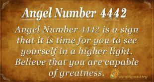 Angel number 4442