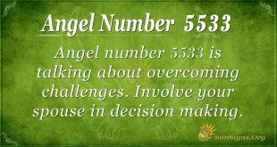 Angel number 5533