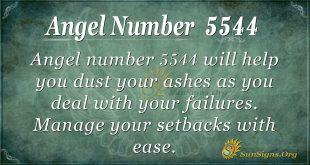 Angel number 5544
