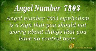 Angel number 7803