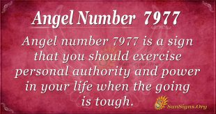 Angel number 7977