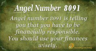 Angel number 8091