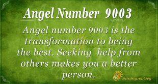 Angel number 9003