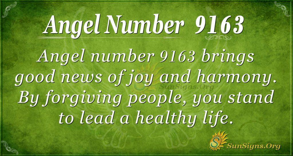 Angel number 9163