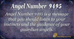 Angel number 9495