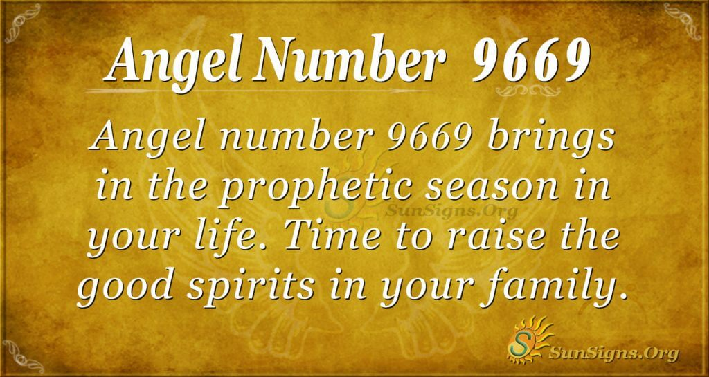 Angel number 9669