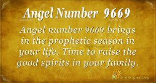 Angel number 9669