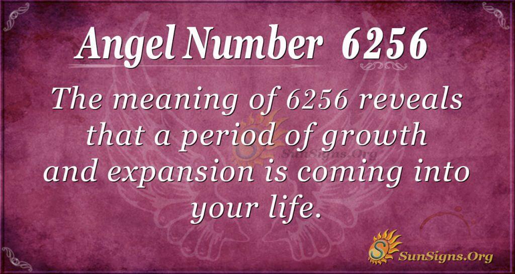 angel number 6256