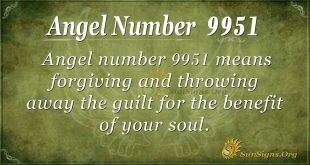 Angel number 9951