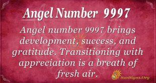 Angel number 997
