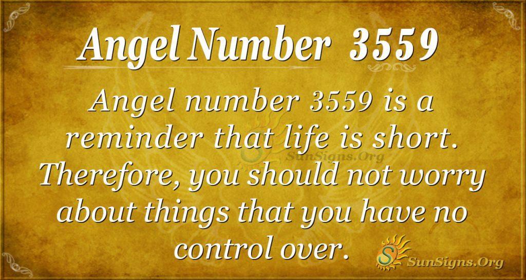 Angel number 3559