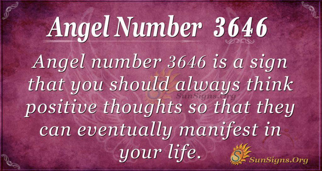 Angel number 3646
