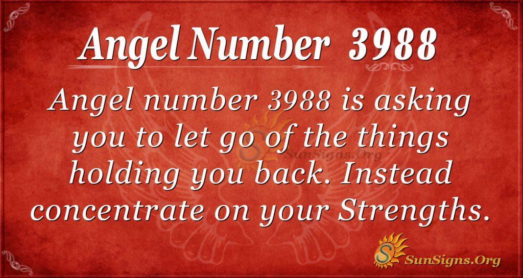 Angel number 3988