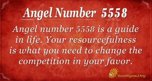 Angel number 5558