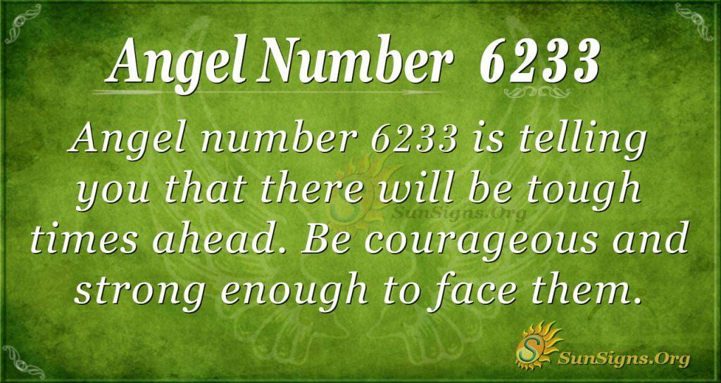 Angel number 6233