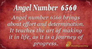Angel number 6560