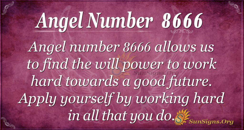 angel number 8666