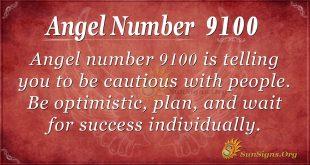 Angel number 9100