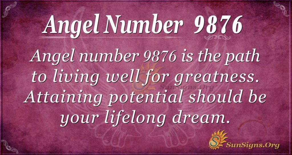 Angel number 9876