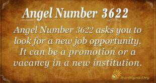 Ange Number 3622