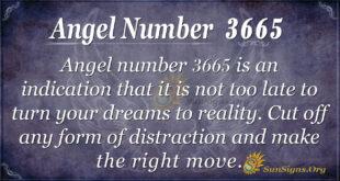 Angel Number 3665