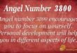Angel Number 3800