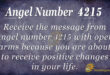 4215 angel number