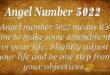 Angel number 5022