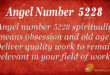 5228 angel number