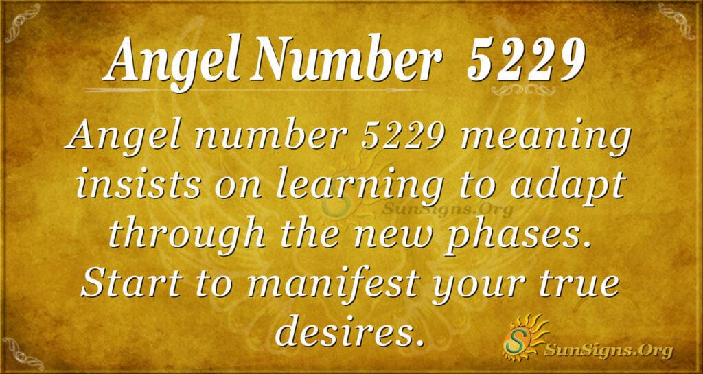 Angel number 5229