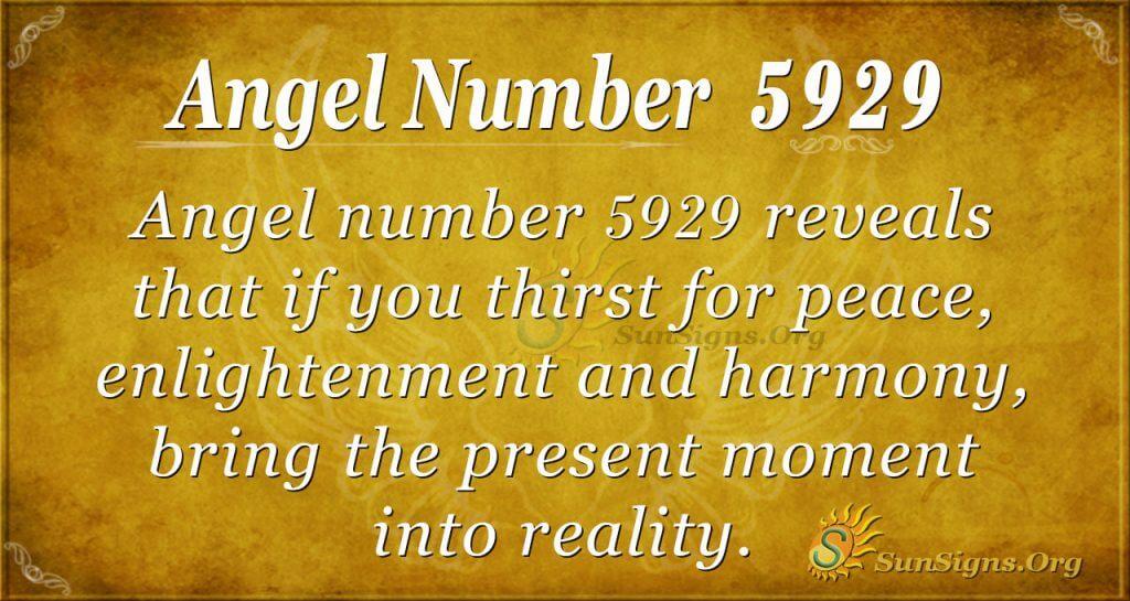Angel number 5929