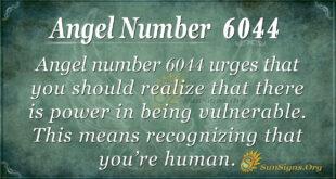 6044 angel number