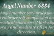 Angel number 6884