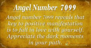 Angel number 7099