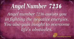 Angel number 7236