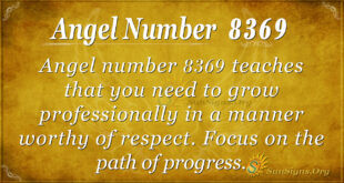 Angel number 8369