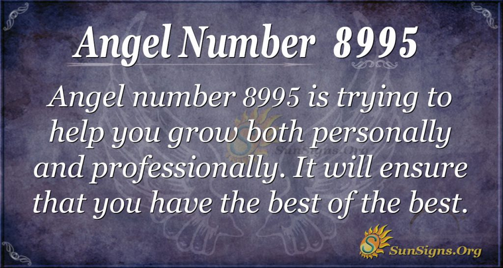 Angel number 8995