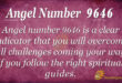 Angel Number 9646