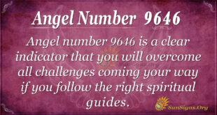 Angel Number 9646