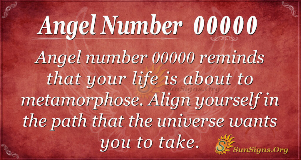 00000 angel number