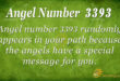 3393 angel number