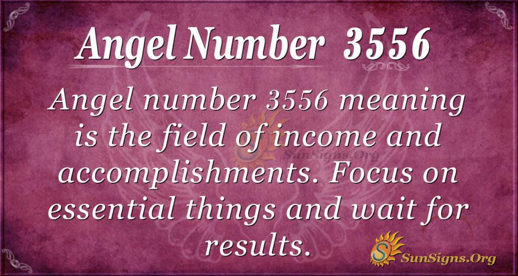 3556 angel number
